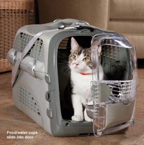 Livecat-air-transport